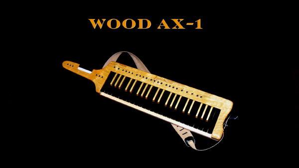 Wood Ax1